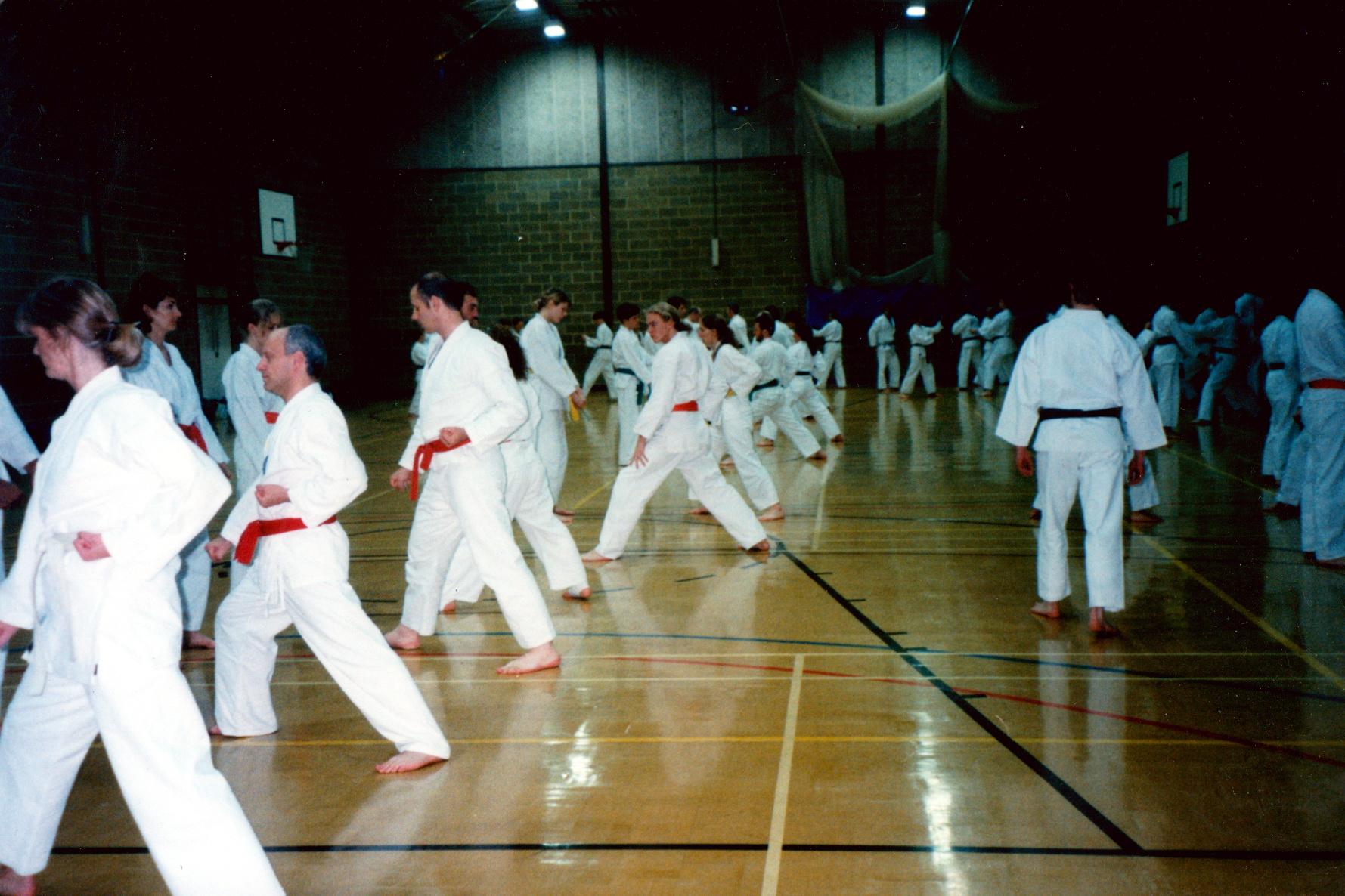 SHOTO North London Karate Classes Kumite Kyu Grades