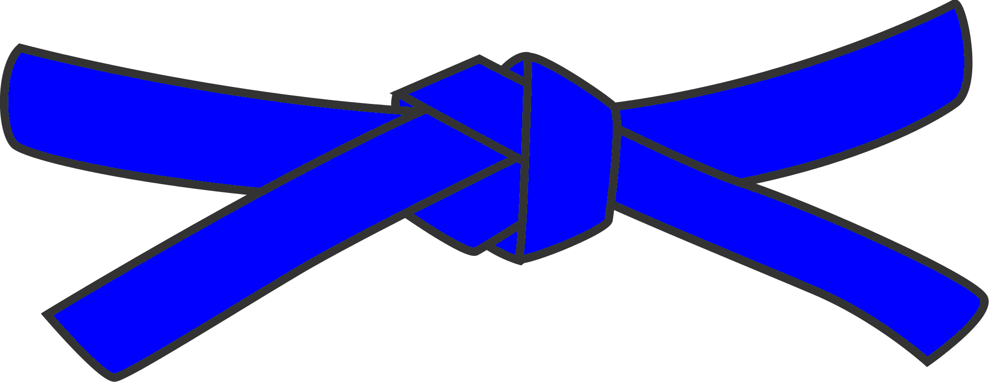 6th Kyu - Blue belt